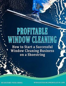 Window Cleaning book